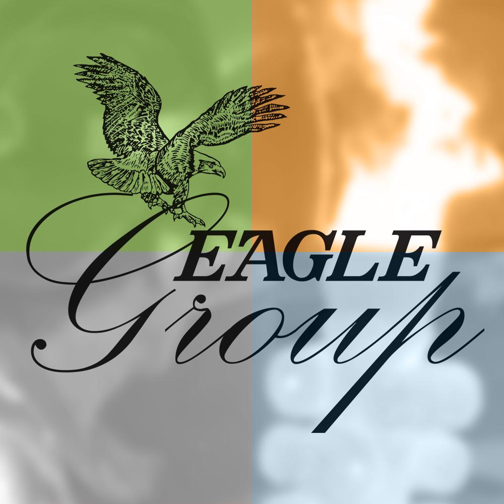 Eagle Group Company 25